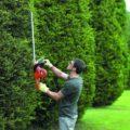 Обзор садовых ножниц и кусторезов для стрижки кустов: модели, назначение, особенности выбора и отзывы