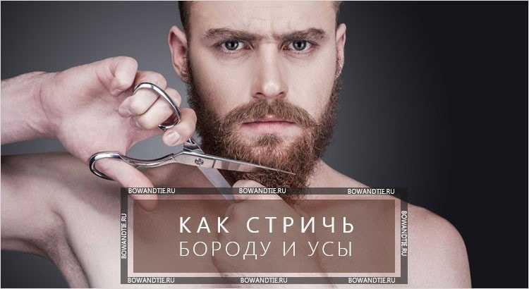 Как правильно пользоваться триммерами для бороды, усов, носа, ушей