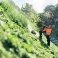 Триммеры для травы - купить бензиновые и электрические триммеры, узнать цены, технические характеристики | официальный сайт Husqvarna