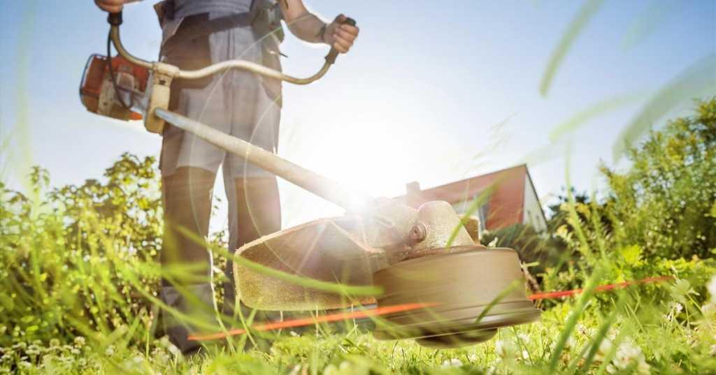 Триммер электрический DORN SF7A223, 550 Вт/захват 30 см купить недорого в интернет магазине товаров для сада и огорода Бауцентр