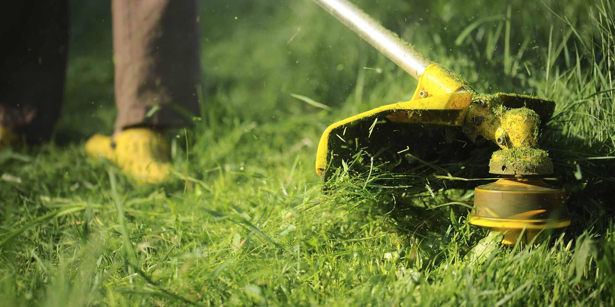 И газон подправить и сена накосить, триммеры и косы, как выбрать?   Веселое подворье