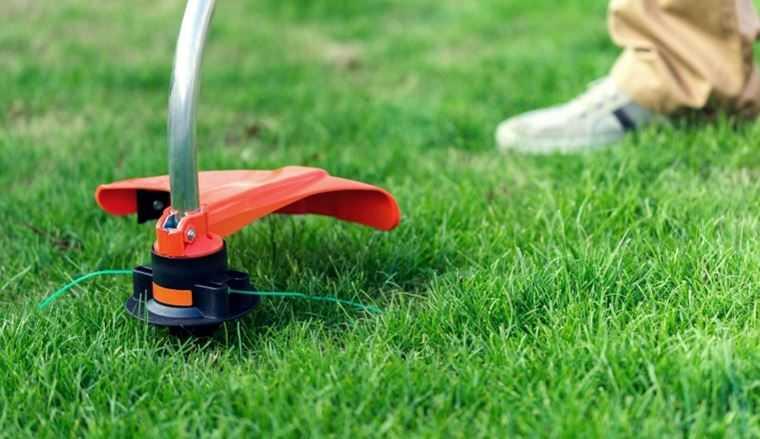 Как выбрать бензиновый триммер: какой лучше для покоса травы на дачи и возле дома, отзывы владельцев, выбор с учетом цены и качества, сравнение характеристик