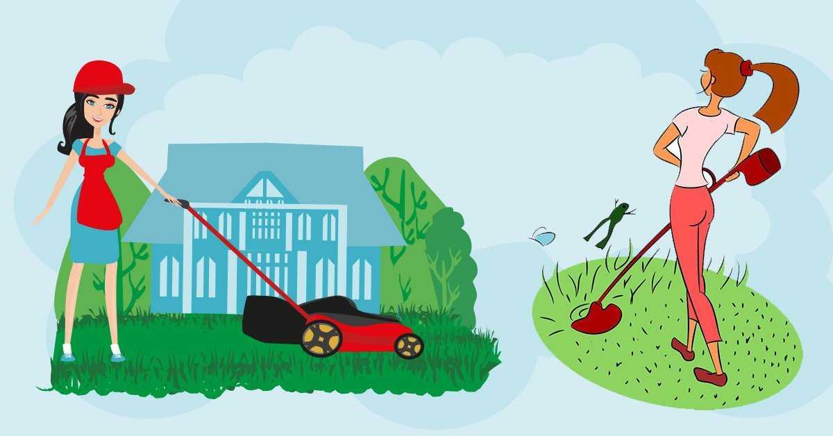 Стрижка газона: чем косить траву и как часто – советы и рекомендации