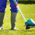 10 ошибок при использовании электрического садового триммера | Газонокосилки и триммеры | Блог | Клуб DNS